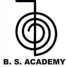 bsacademy.co.in